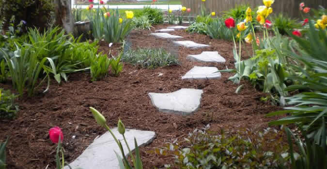 rock landscaping